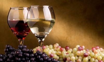 Career in Wine Tasting